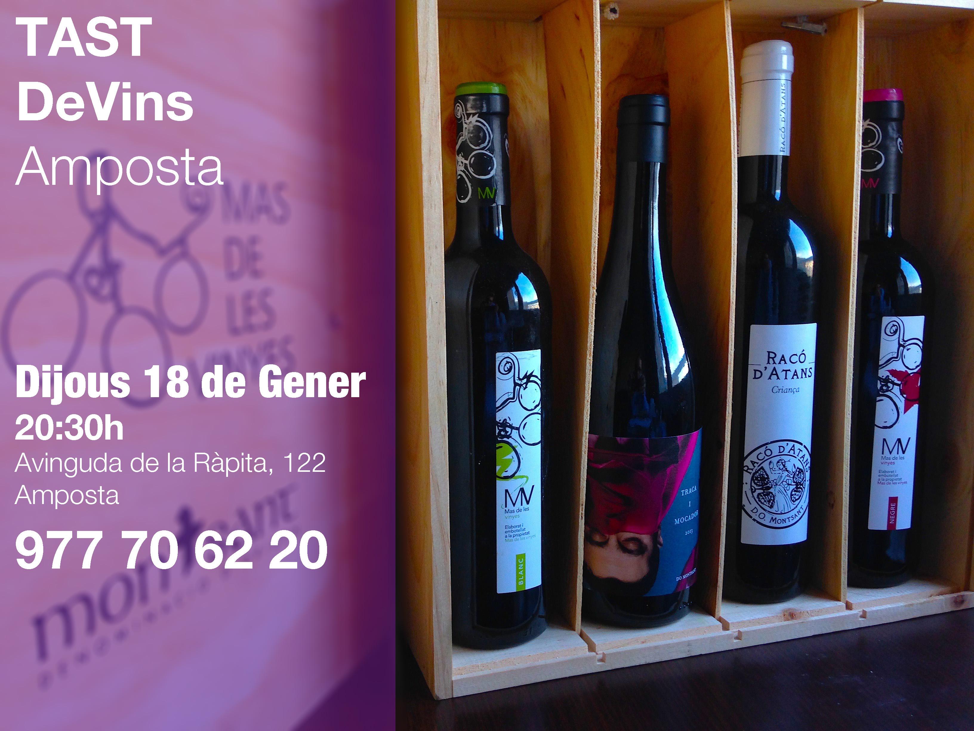 Tast de vins a Tarragona