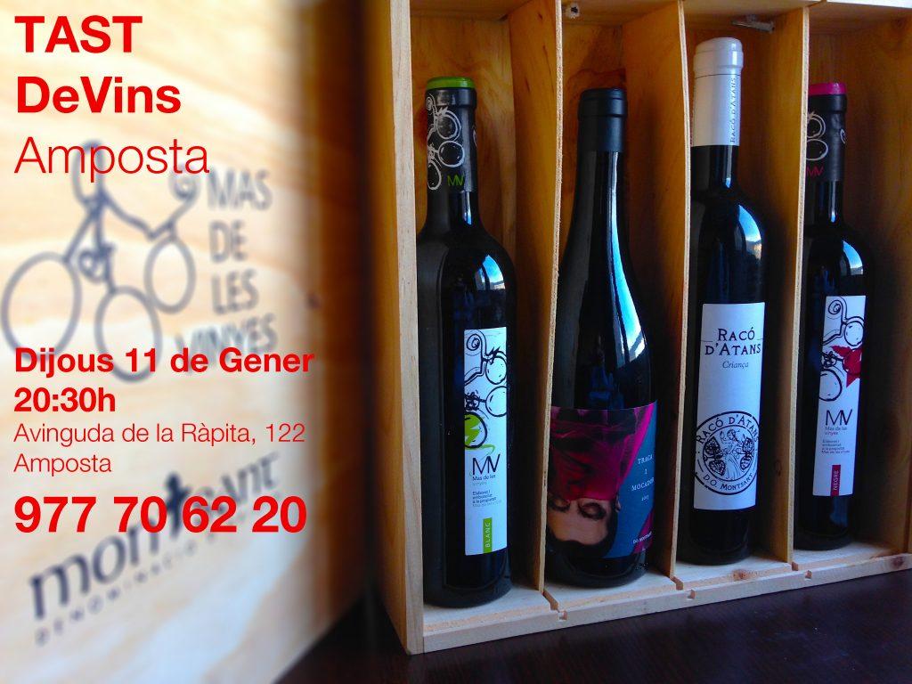 tast de vins tarragona