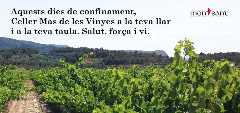 Vins Montsant Mas de les Vinyes